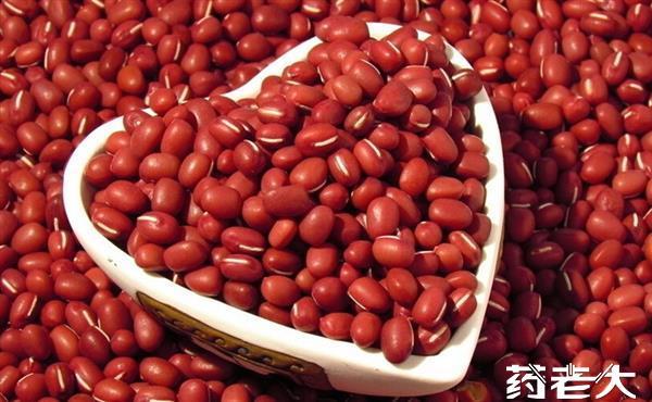 赤小豆提取物